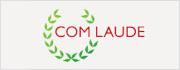 通过comlaude注册.世界中文域名